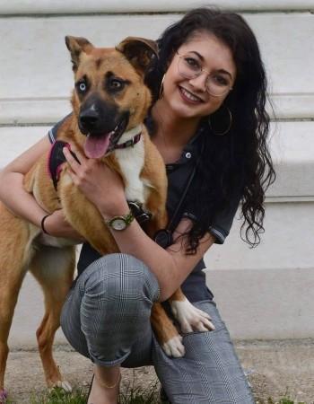 Etudiante Vétérinaire propose du soutien scolaire niveau Primaire – Collège – Lycée