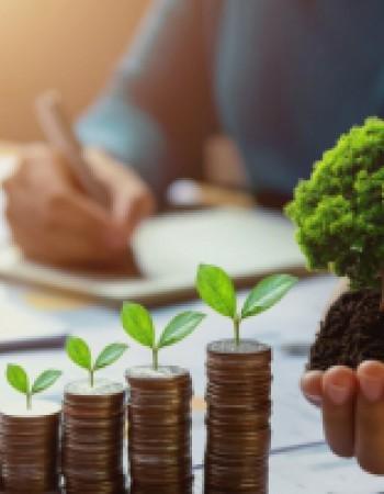 En partant de zéro, comprendre l'économie et la finance mondiale. Développer votre éducation financière