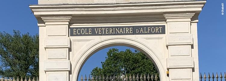 Fronton de l'école vétérinaire de Maison Alfort, une des meilleures écoles pour devenir vétérinaire