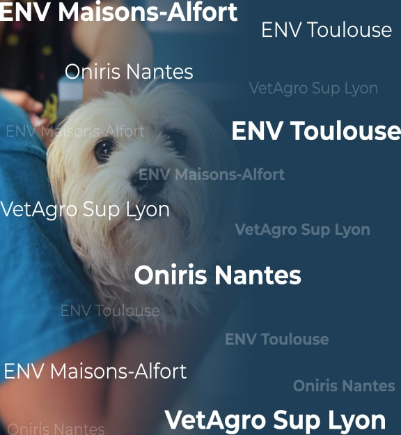 bcpst integrer ecole veterinaire UNE